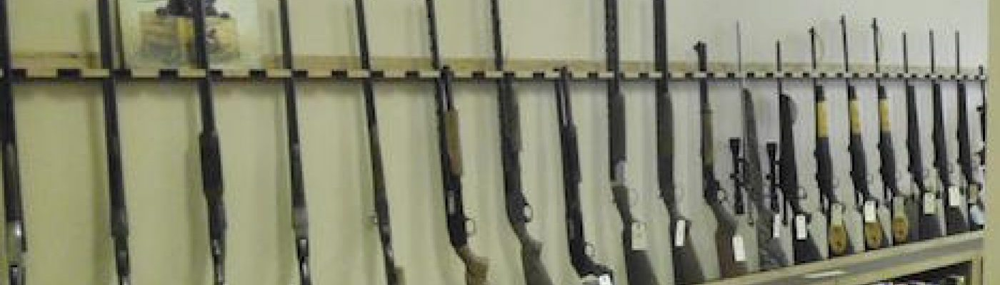 cropped-guns.jpg